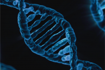 Representación artística de un bucle de ADN como carátula de un capítulo de A Ciencia Cierta