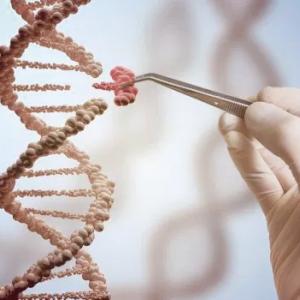Representación artística de una molécula de ADN siendo manipulada como carátula de un capítulo de A Ciencia Cierta: CRISPR La gran revolución en la ingeniería genética