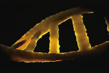 Bucle de ADN como carátula de un capítulo de A Ciencia Cierta: Diagnósticos genéticos