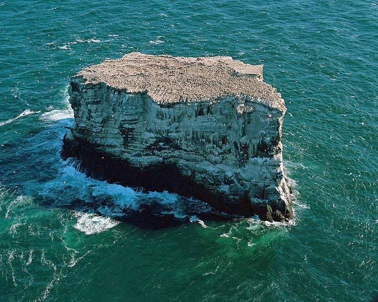 Isla de Eldey, Islandia