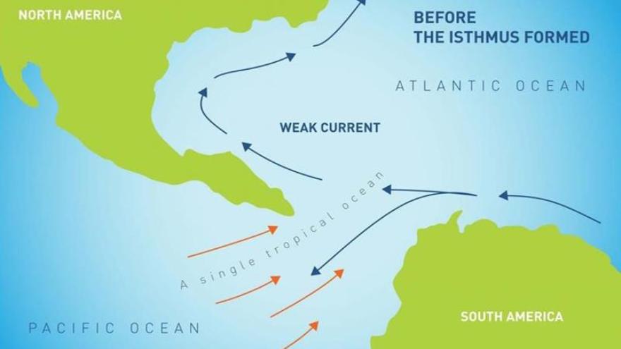 Representación de las corrientes marinas antes del istmo de Panamá (HipanTV)